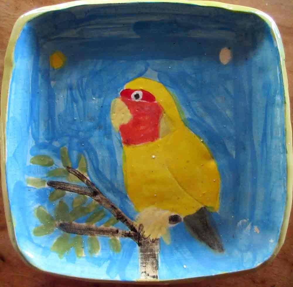 Yellow Parrot Ceramic Plate Zion Levy STewart Paradise Mullumbimby